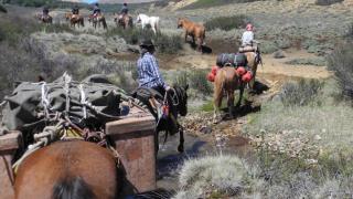 Horse riding in El Sapucai in Patagonia