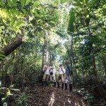 Team in the preuvian jungle